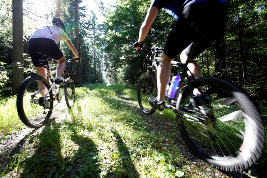 Mountainbikestrecken durch die Wälder rund um Freudenstadt