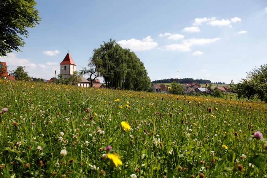 Blick auf die Kirche in Igelsberg