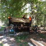Eine kleine Holzhütte am Waldrand