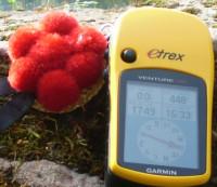Schwarzwaldguide mit GPS