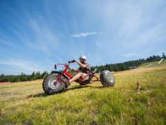 Downhill-Cart auf dem Mehliskopf