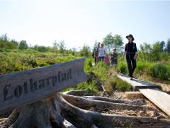 Der Lotharpfad auf der Schwarzwaldhochstraße - eine Famile läuft auf einem Steg