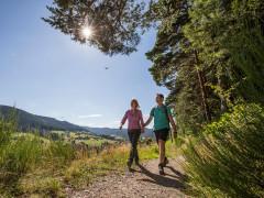 Wanderer auf dem Sommerseitenweg in Baiersbronn