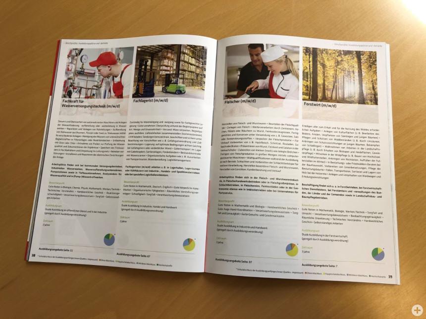 Der Ausbildungsatlas informiert über die Möglichkeiten in Freudenstadt und Umgebung